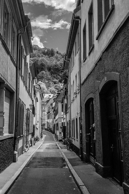 Heidelberg-2